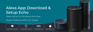 Read more about the article Alexa Echo Dot Setup Instructions and Specifications